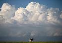 2014_06_23_clouds