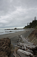 Drfitwood lines the beach at Kalaloch in Olympic National Park, Washington on July 20, 2016. In the background rocks create tide pools during low tide, where visitors can see starfish, sea anemones, and if lucky a nudibranch.