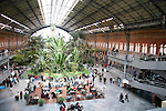 Europe, Spain, Madrid. The atrium of the Madrid Atocha Railway Station.