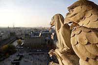Chimeras, overlooking the city, Notre Dame de Paris, 1163 ? 1345, initiated by the bishop Maurice de Sully, Ile de la Cité, Paris, France. Picture by Manuel Cohen