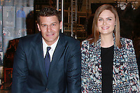CENTURY CITY, CA, USA - NOVEMBER 14: David Boreanaz, Emily Deschanel pose at FOX's 'Bones' 200th Episode Celebration With The Cast And Producers held at the Fox Studio Lot on November 14, 2014 in Century City, California, United States. (Photo by David Acosta/Celebrity Monitor)
