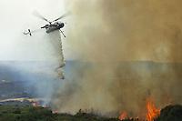 CFS. Incendi. Fire. 2