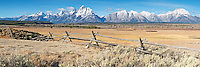 Buckrail fence, Grand Tetons, new snow, October in Grand Teton National Park. Large file and can be printed @300 DPI 48 inches wide.