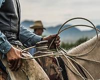 Cowboy Photos