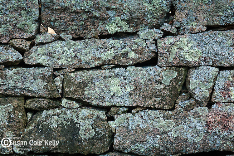 Lichens cover a stone wall at Eastover Farm in Rochester, MA, USA