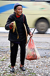 Asia, China, Yangshou. A Chinese farmer offers a stalk of rice to passing tourists whose bus has stopped to see a rice paddy.