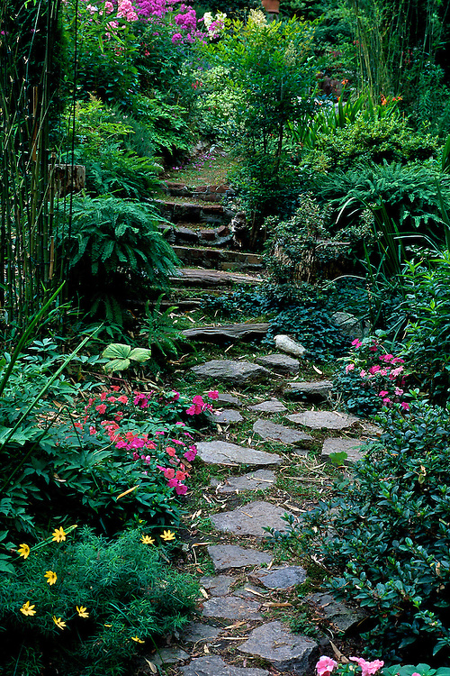 Stepping Stone Path Through Lush Green Garden In Spring Patrick O 39 Leary