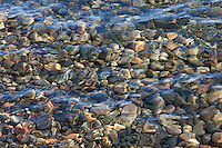 """Pebbles in Lake Tahoe 1"" - These pebbles under the water were photographed near Kaspian Point in Lake Tahoe, CA."