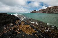 Waves break against the dark rocks at Blowhole Beach, Deep Creek Conservation Area, South Australia.