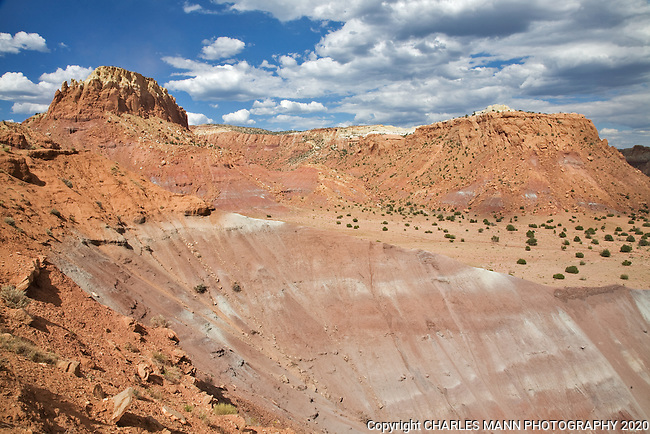 The red and pink sandstone of Kitchen Mesa at Ghost Ranch, near Abiquiu, New Mexico, results in some colorful landscapes.