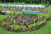 Rainbow garden with sign and bench, Community garden, Maine