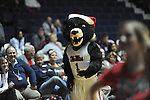 "Rebel the Bear mascot attends Ole Miss vs. Belmont at the C.M. ""Tad"" Smith Coliseum in Oxford, Miss. on Sunday, December 16, 2012. Ole Miss won 63-48."