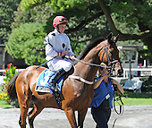 Gregory Hawkins' Red Letter Day, the longest shot in the field at 21 -1 , posted a big upset in the Grade 1 $150,000 Lonesome Glory Steeplechase at Belmont Park on Sunday, Sept. 20, 2009 for jockey Bernie Dalton and trainer Janet Elliot. Dynaski was second and Arcadius was third.