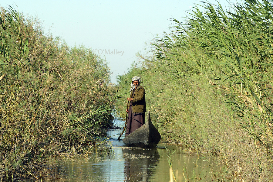 A Marsh Arab makes his way through an avenue of reeds by canoe...The Marsh Arabs of Southern Iraq, who after years of persecution and their habitat destroyed by the hands of the dictator Saddam Hussein have begun returning to their recently re-flooded homeland, south of Nasiriyah. They plan to rebuild their lives in what they hope will be a more just and humane New Iraq, but also to rise from the abject poverty that they have known throughout their history...5 April 2004 , Iraq