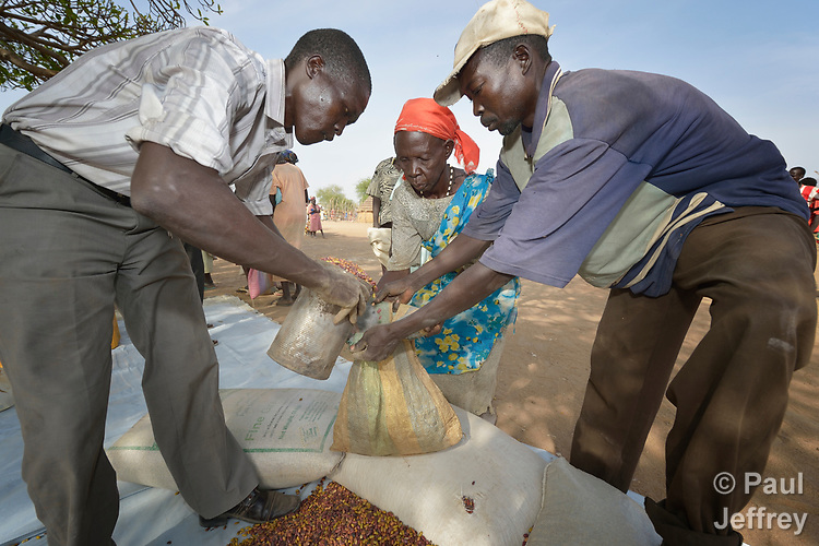 A woman receives beans from the ACT Alliance on April 7, 2017, in Rumading, a village in South Sudan's Lol State where more than 5,000 people, displaced by drought and conflict, remain in limbo. In early 2017, they set out walking for Sudan, seeking better conditions, but were stopped from crossing the border. They remain camped out under the trees at Rumading, eating wild leaves as the rainy season approaches. <br /> <br /> In early April, Norwegian Church Aid, a member of the ACT Alliance, began drilling a well in the informal settlement and distributed sorghum, beans and cooking oil to the most vulnerable families. <br /> <br /> The ACT Alliance is carrying out the emergency assistance in coordination with government officials and the local Catholic parish.