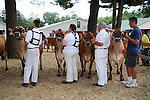 Farmers with their cows in cattle show arena at Cheshire Fair in Swanzey, New Hampshire USA