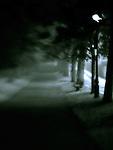 Dark Path with blur