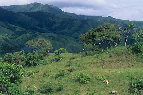 Tropical rainforest land in Costa Rica cleared for agriculture and grazing, Central America. Note the steep slopes subject to erosion.