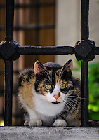 Travel Photography. <br />