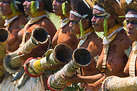 Group of female performers, Morobe SingSing dance, Papua New Guinea