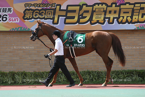 Smart Orion, JULY 26, 2015 - Horse Racing : Smart Orion is led through the paddock before the Toyota Sho Chukyo Kinen at Chukyo Racecourse in Aichi, Japan. (Photo by Eiichi Yamane/AFLO)