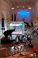 The 2009 US Open Squash Championships were held at Stanley Hall at the legendary Field Museum in downtown Chicago, IL and benefitted METROsquash.