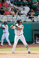 Down East Wood Ducks catcher Josh Morgan (3) at bat during a game against the Salem Red Sox at Grainger Stadium on April 16, 2017 in Kinston, North Carolina. Salem defeated Down East 9-2. (Robert Gurganus/Four Seam Images)