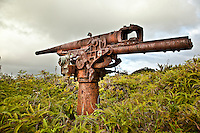 Large anti-aircraft gun from World War II, Yap Micronesia. (Photo by Matt Considine - Images of Asia Collection)