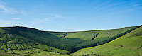 Hillside forest plantation on backside of Hay Bluff, near Gospel Pass, Brecon Beacons national park, Powys, Wales