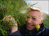 BNPS.co.uk (01202) 558833<br /> Picture: Phil Yeomans<br /> <br /> National Trust Conservationist Lucy Cordrey with the original female asparagus plant found in 1997.<br /> <br /> Botanists are hailing the success a painstaking project to save the loneliest plant in Britain from dying out after they mated it with a partner from 175 miles away. A rare single female wild asparagus plant, which can only reproduce sexually, was found leading a solitary existence on the Isle of Portland in Dorset in 1997 and experts pollinated the plant with a male variety from Cornwall. The female plant produced 60 seeds which were carefully propagated in a greenhouse and then planted back on Portland bill. Out of the original plants, 51 are thriving today and 11 of them - seven males and four females - have now flowered for the first time.