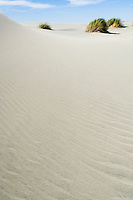 Sand dunes at Farewell Spit, New Zealand