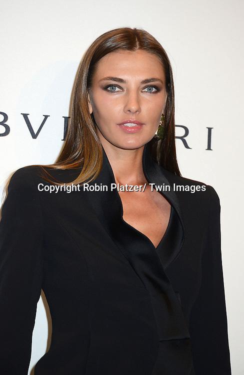 Alina Baikova attends the amfAR New York Gala on February 5, 2014 at Cipriani Wall Street in New York City.