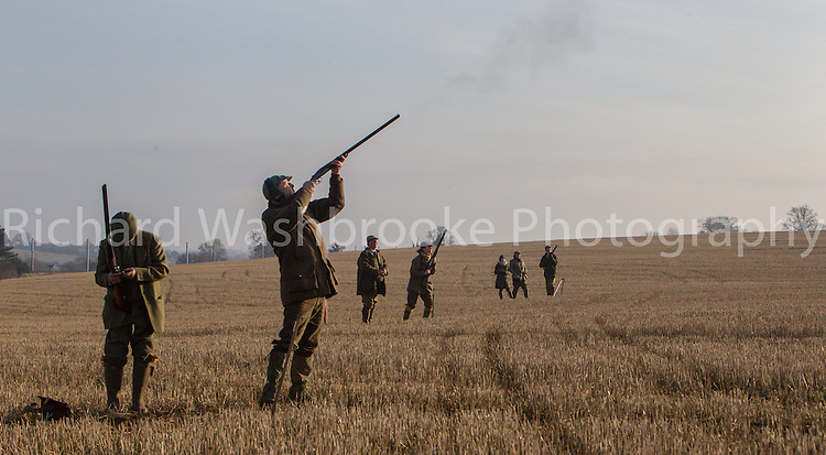 Luton Hoo Estate Shoot  8th December 2012