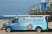 Bird Busters were taking care of business under the Santa Monica pier on Tuesday, June 5, 2012..Bird Busters offers safe and humane bird control specializing in Seagulls, Crows and Pigeons.
