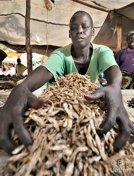 Peresi Nyoka sells dried shrimp in the market in Yei, Southern Sudan, supported by a microfinance program run by the United Methodist Women in Yei.