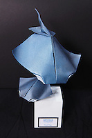 OrigamiUSA 2014 exhibition. Origami Devil Ray designed by Paul Frasco