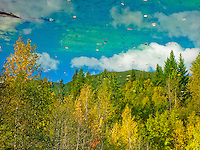 A rocky mountain scene of aspen and cootonwoods in fall color mountains and forest azure skies and white billowy clouds as reflected in a mountain pond.