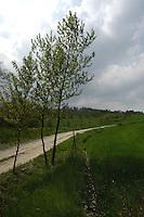 Paesaggi. Landscape...