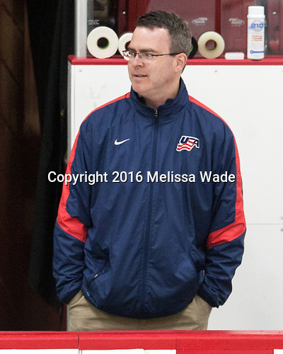 Jason Hodges - The Harvard University Crimson defeated the US National Team Development Program's Under-18 team 5-2 on Saturday, October 8, 2016, at the Bright-Landry Hockey Center in Boston, Massachusetts.