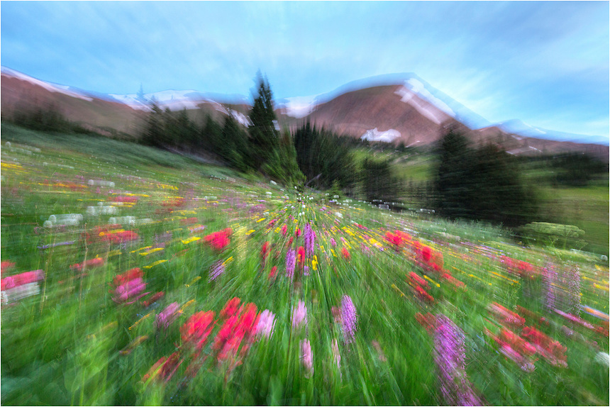 While waiting for the sun to rise, I took this image of Colorado Wildflowers along the Continental Divide while changing the focus during the exposure. After several attempts using a long exposure, I finally achieved the results I was hoping for - an effect that looked like you were moving through the field of flowers very quickly.