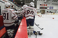 Liberty Students cheer on their D1 Men's Hockey team to victory at the Ice Palace on February 15, 2014. (Photo by Lizzy Benson)