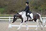 Class 3. Prelim 1. Unaffiliated dressage. Brook Farm Training Centre. Essex. 19/03/2017. MANDATORY Credit Garry Bowden/Sportinpictures - NO UNAUTHORISED USE - 07837 394578