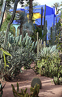 Villa and cactus garden, Majorelle Garden, Marrakech, Morocco. These botanical gardens were designed by French painter Jacques Majorelle, 1886-1962, in the 1920s and 1930s. He invented the shade of cobalt blue, known as Majorelle blue, which is used on the buildings and walls. Picture by Manuel Cohen