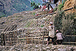 Constructing Hut