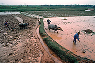 April 15th, 1989, Poyang, Jiangxi Province, China: daily life, rural scenes of the outskirts.