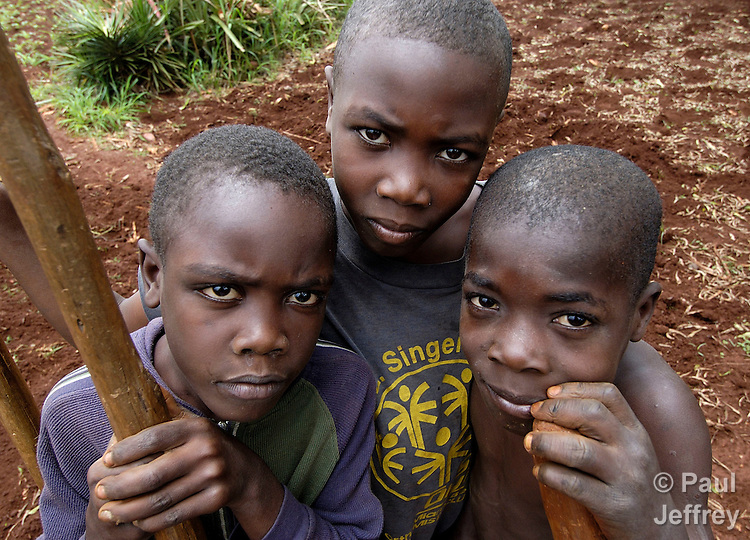 Haitian boys working in the fields in the isolated northwest of the Caribbean island nation.