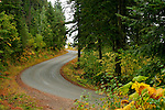 Fernan Hill road twists and turns up a long grade into the national forest east of Coeur D Alene, Idaho, USA