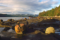 Haida Gwaii (Queen Charlotte Islands), Northern BC, British Columbia, Canada - Coastline along Skidegate Inlet at Low Tide, near Queen Charlotte City on Graham Island