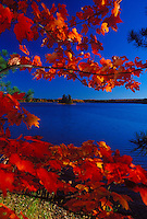 Maples in fall color frame a lake in Michigan's Upper Peninsula in autumn.