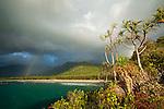 VIew of Myall Beach during morning rain storm.  Cape Tribulation, Daintree National Park, Queensland, Australia